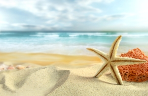 bigstock-Starfish-on-the-Beach--25581842