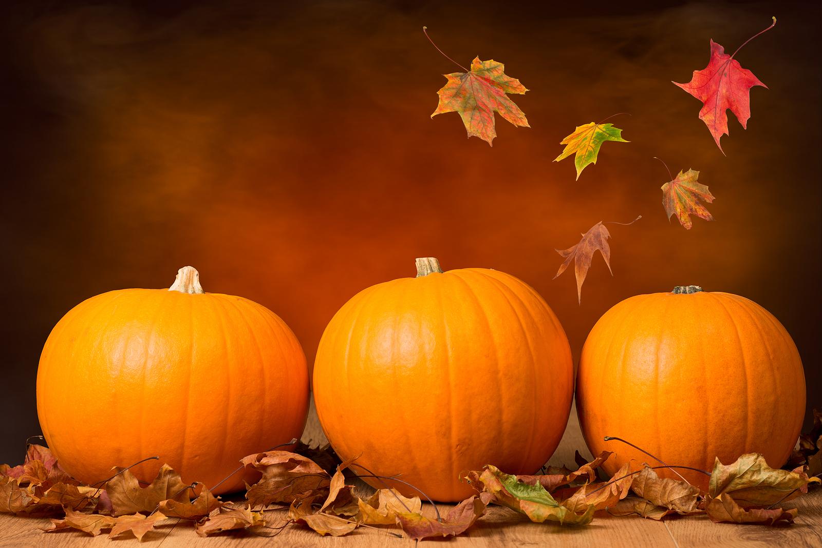 19 september 2014 life love lima beans - Pumpkin wallpaper fall ...